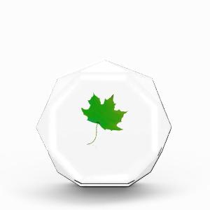 single maple green leaf plant image.png awards