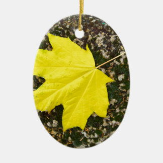 Single maple leaf fallen on the surface of a large ceramic ornament