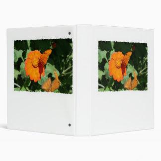 Single orange butterfly on a single orange flower binders