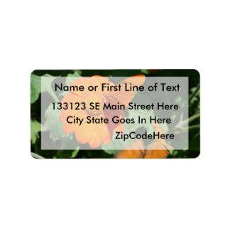 Single orange butterfly on a single orange flower address label