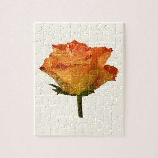 Single Orange Rose Jigsaw Puzzle