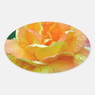 Single orange tea rose oval sticker