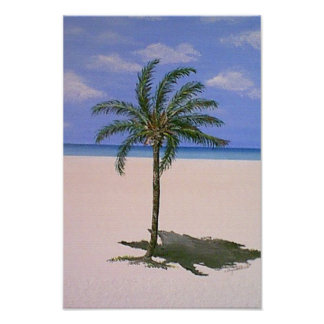 Single Palm Tree Posters
