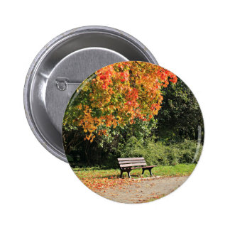 Single Park Bench In The Autumn Pinback Button