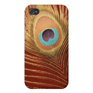 Single Peacock Feather Cover For iPhone 4
