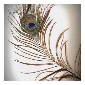 Single Peacock Feather Panel Wall Art
