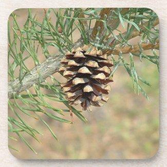 Single Pine Cone Coasters
