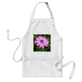 Single Pink African Daisy Against Green Foliage Adult Apron