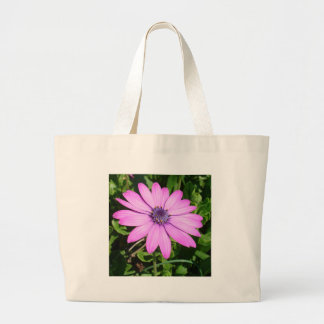 Single Pink African Daisy Against Green Foliage Tote Bags