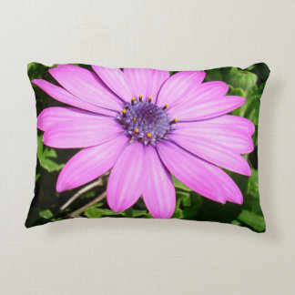 Single Pink African Daisy Against Green Foliage Decorative Pillow