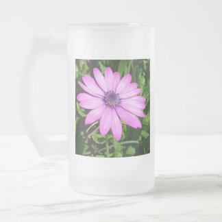 Single Pink African Daisy Against Green Foliage Frosted Glass Beer Mug
