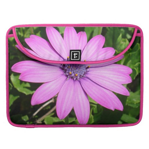 Single Pink African Daisy Against Green Foliage Sleeves For MacBooks