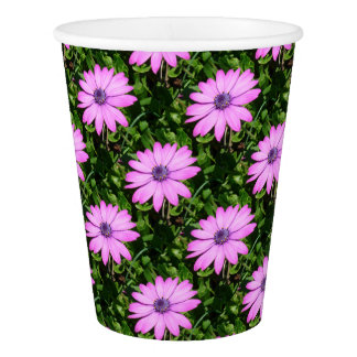 Single Pink African Daisy Against Green Foliage Paper Cup