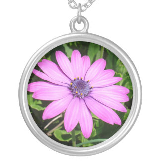 Single Pink African Daisy Against Green Foliage Round Pendant Necklace