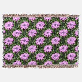 Single Pink African Daisy Against Green Foliage Throw