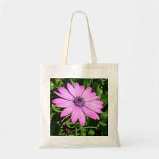 Single Pink African Daisy Against Green Foliage Tote Bag