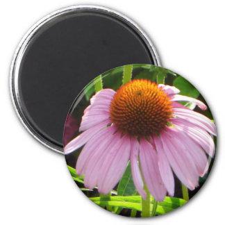 Single Pink Coneflower Magnet