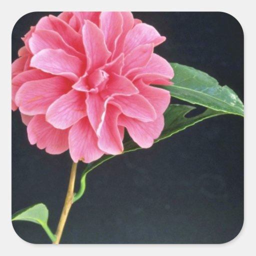 Single Pink Flower flowers Sticker