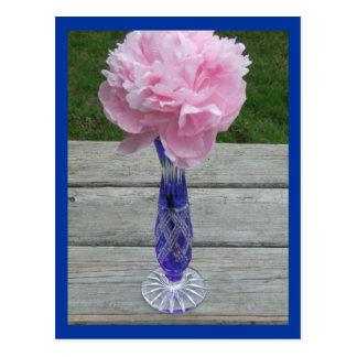 Single Pink Peiny in Blue Caesar Crystal Vase Postcard