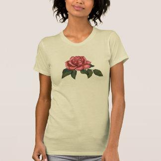 Single Pink Rose: Color Pencil Drawing Tee Shirts