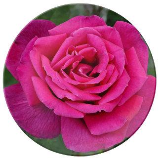 Single pink rose plate