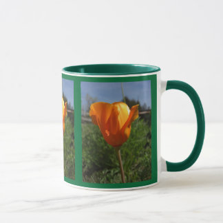 Single Poppy Mugs