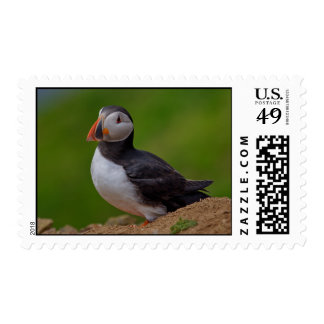 Single Puffin Postage