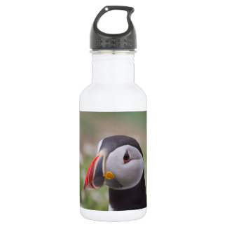Single Puffin Stainless Steel Water Bottle