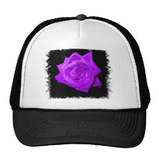 Single purple lilac rose against black jagged hats