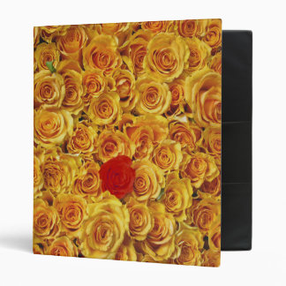 Single Red in Yellow Bed Roses Binder