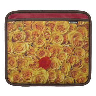 Single Red in Yellow Bed Roses Sleeves For iPads