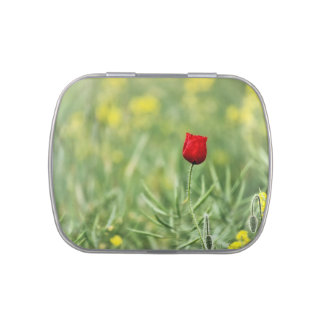 Single Red Poppy Candy Tin