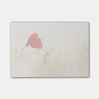 Single Red Poppy in a Grassy Field Post-it® Notes