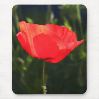 Single Red Poppy Mouse Mats