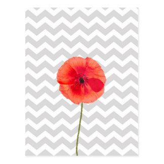 Single red poppy on grey and white chevron pattern postcard