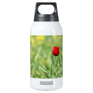 Single Red Poppy Thermos Water Bottle