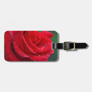 Single red rose blossoms tags for bags