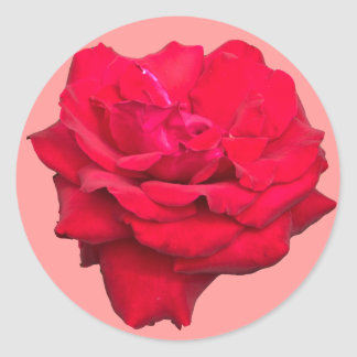 Single Red Rose Classic Round Sticker