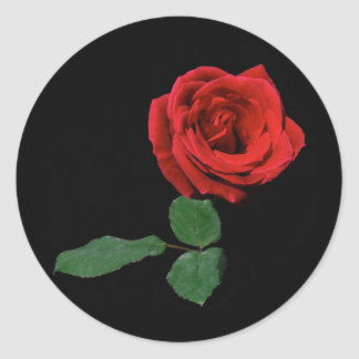 Single Red Rose Classic Round Sticker