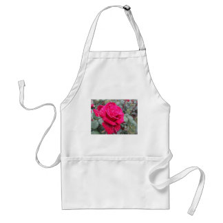 Single red rose flower with water droplets adult apron