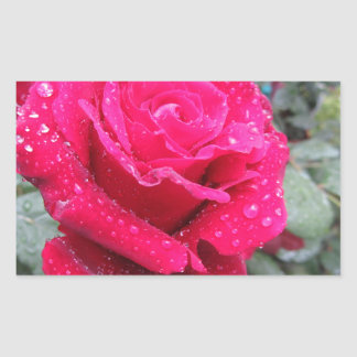 Single red rose flower with water droplets rectangular sticker