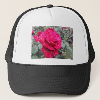 Single red rose flower with water droplets trucker hat