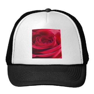 Single Red Rose Mesh Hats