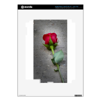 single red rose.jpg iPad 3 decals