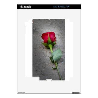 single red rose.jpg skin for iPad 2