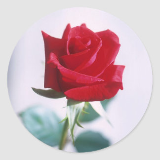 Single Red Rose Matching Stickers