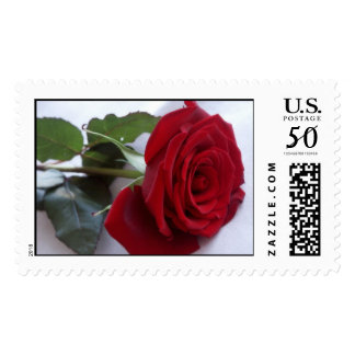Single Red Rose Postage