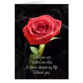 Single Red Rose Romantic Valentines Day Poem