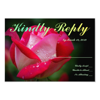 Single Red Rose Stunning Card