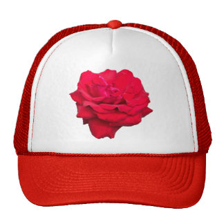 Single Red Rose Trucker Hat